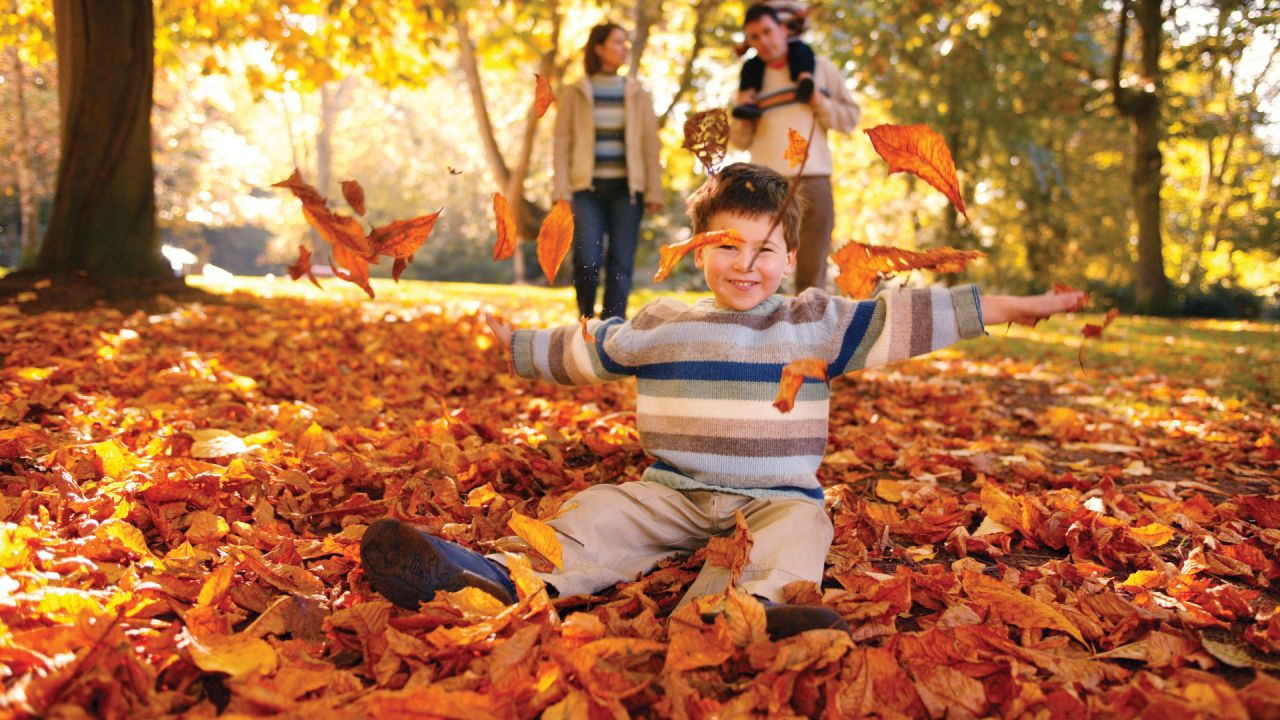 Child Playing in the Leaves at Sir Thomas and Lady Dixon Park Autumn